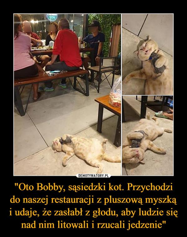 """""""Oto Bobby, sąsiedzki kot. Przychodzi do naszej restauracji z pluszową myszką i udaje, że zasłabł z głodu, aby ludzie się nad nim litowali i rzucali jedzenie"""" –"""