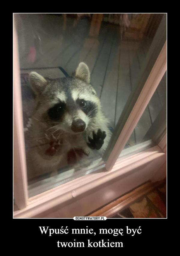 Wpuść mnie, mogę byćtwoim kotkiem –