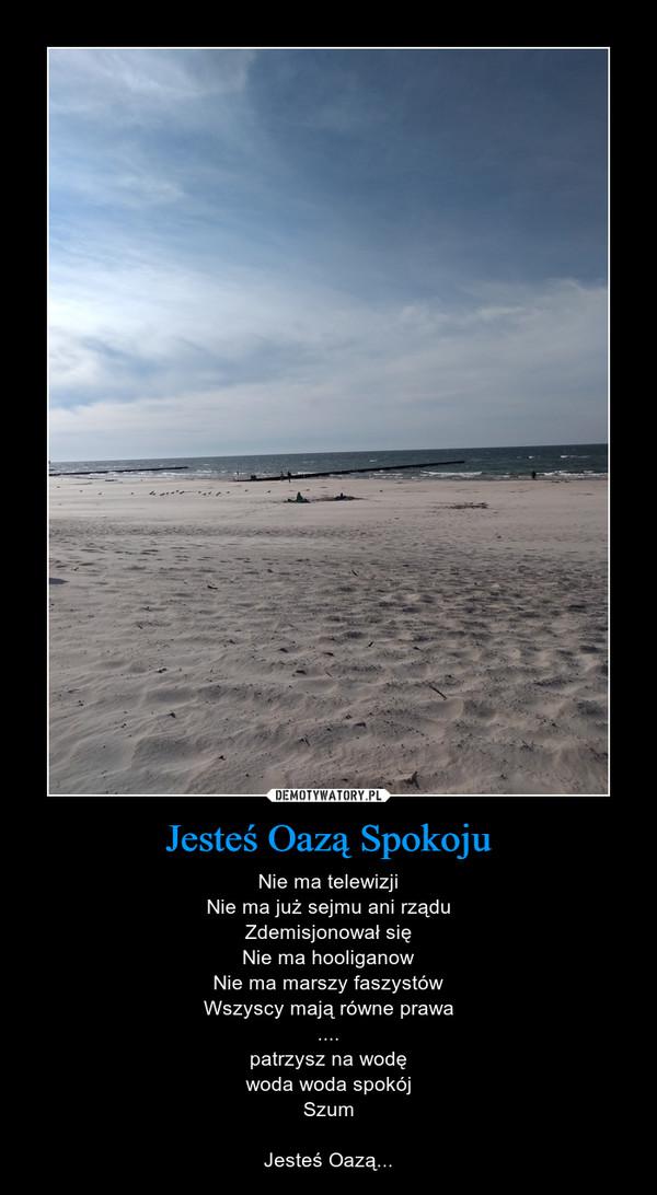 Jesteś Oazą Spokoju – Nie ma telewizjiNie ma już sejmu ani rząduZdemisjonował sięNie ma hooliganowNie ma marszy faszystówWszyscy mają równe prawa....patrzysz na wodęwoda woda spokójSzumJesteś Oazą...