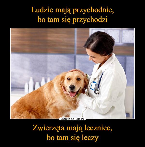 Zwierzęta mają lecznice,bo tam się leczy –