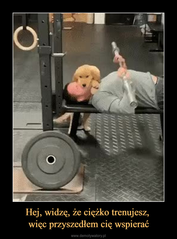 Hej, widzę, że ciężko trenujesz, więc przyszedłem cię wspierać –