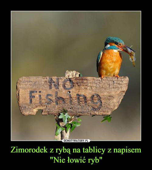 """Zimorodek z rybą na tablicy z napisem """"Nie łowić ryb"""""""