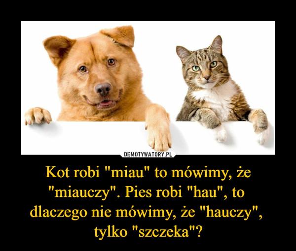 """Kot robi """"miau"""" to mówimy, że """"miauczy"""". Pies robi """"hau"""", to dlaczego nie mówimy, że """"hauczy"""", tylko """"szczeka""""? –"""