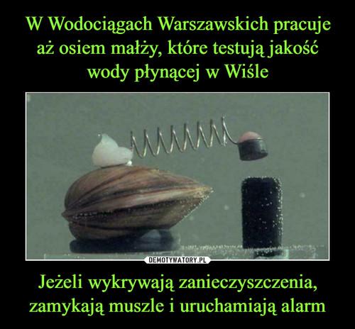 W Wodociągach Warszawskich pracuje aż osiem małży, które testują jakość wody płynącej w Wiśle Jeżeli wykrywają zanieczyszczenia, zamykają muszle i uruchamiają alarm