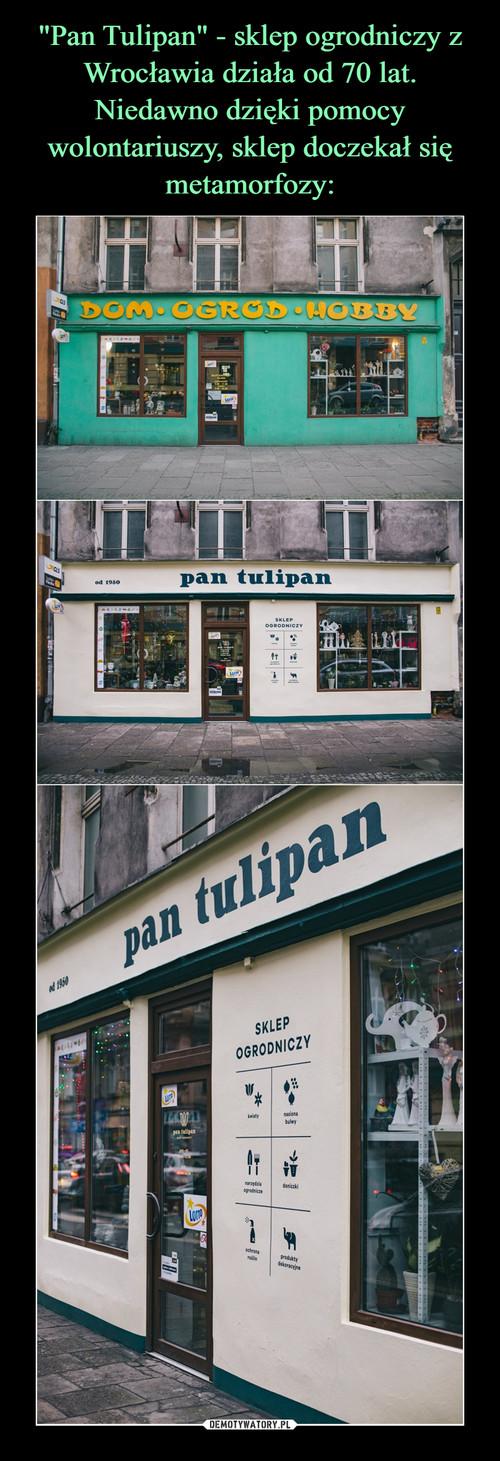 """""""Pan Tulipan"""" - sklep ogrodniczy z Wrocławia działa od 70 lat. Niedawno dzięki pomocy wolontariuszy, sklep doczekał się metamorfozy:"""