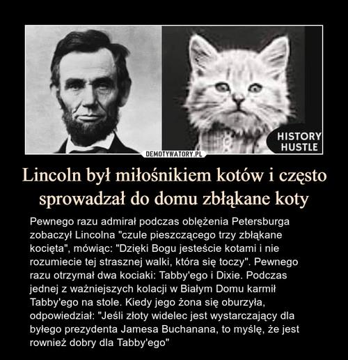Lincoln był miłośnikiem kotów i często sprowadzał do domu zbłąkane koty