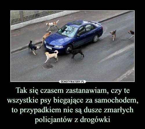 Tak się czasem zastanawiam, czy te wszystkie psy biegające za samochodem, to przypadkiem nie są dusze zmarłych policjantów z drogówki