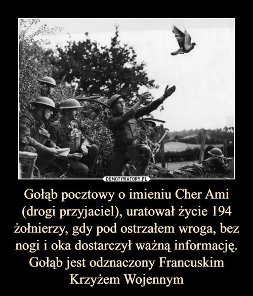 Gołąb pocztowy o imieniu Cher Ami (drogi przyjaciel), uratował życie 194 żołnierzy, gdy pod ostrzałem wroga, bez nogi i oka dostarczył ważną informację. Gołąb jest odznaczony Francuskim Krzyżem Wojennym