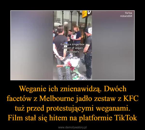 Weganie ich znienawidzą. Dwóch facetów z Melbourne jadło zestaw z KFC tuż przed protestującymi weganami. Film stał się hitem na platformie TikTok –