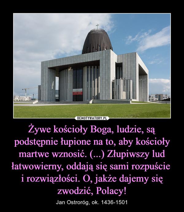 Żywe kościoły Boga, ludzie, są podstępnie łupione na to, aby kościoły martwe wznosić. (...) Złupiwszy lud łatwowierny, oddają się sami rozpuście i rozwiązłości. O, jakże dajemy się zwodzić, Polacy! – Jan Ostroróg, ok. 1436-1501