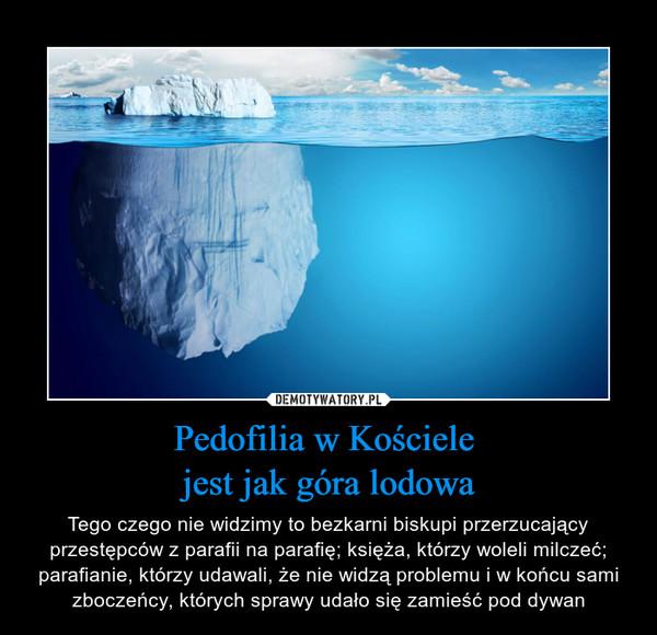 Pedofilia w Kościele jest jak góra lodowa – Tego czego nie widzimy to bezkarni biskupi przerzucający przestępców z parafii na parafię; księża, którzy woleli milczeć; parafianie, którzy udawali, że nie widzą problemu i w końcu sami zboczeńcy, których sprawy udało się zamieść pod dywan