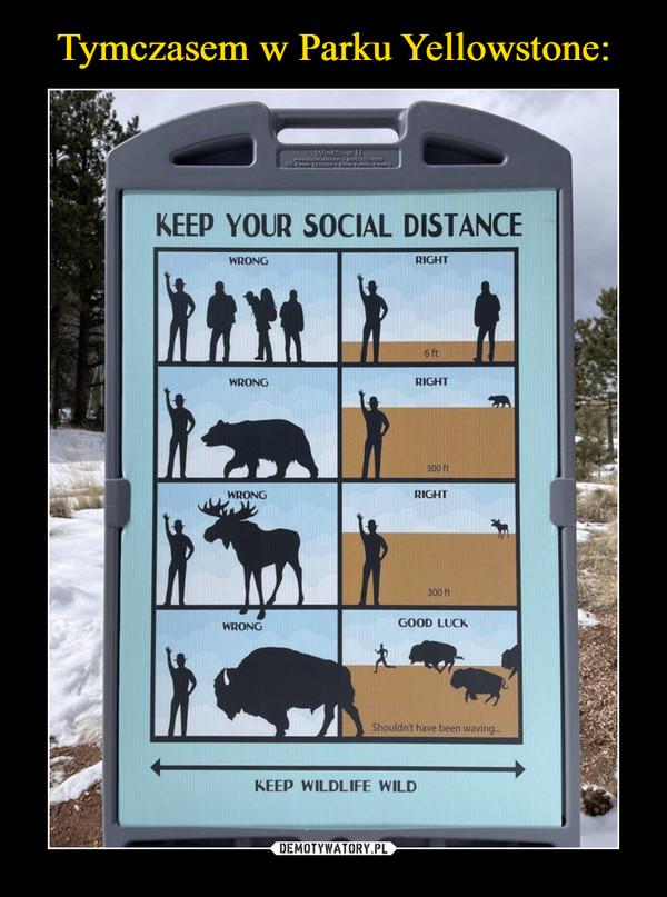 –  Tymczasem w Parku Yellowstone:WinttsKEEP YOUR SOCIAL DISTANCEWRONGRIGHT6 ftWRONGRIGHT300 ftWRONGRIGHT300 ftWRONGGOOD LUCKShouldn't have been wavingKEEP WILDLIFE WILDDEMOTYWATORY.PL