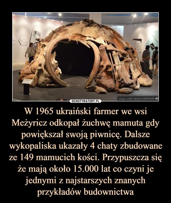 W 1965 ukraiński farmer we wsi Meżyricz odkopał żuchwę mamuta gdy powiększał swoją piwnicę. Dalsze wykopaliska ukazały 4 chaty zbudowane ze 149 mamucich kości. Przypuszcza się że mają około 15.000 lat co czyni je jednymi z najstarszych znanych przykładów budownictwa –