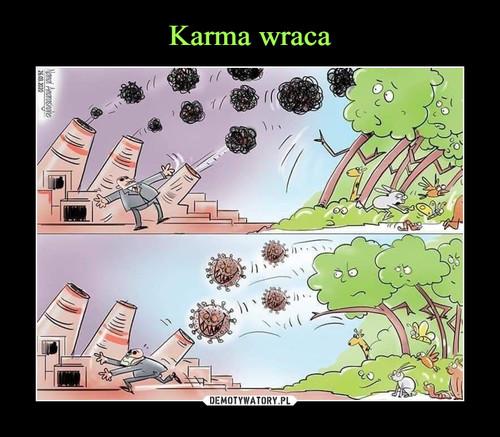 Karma wraca