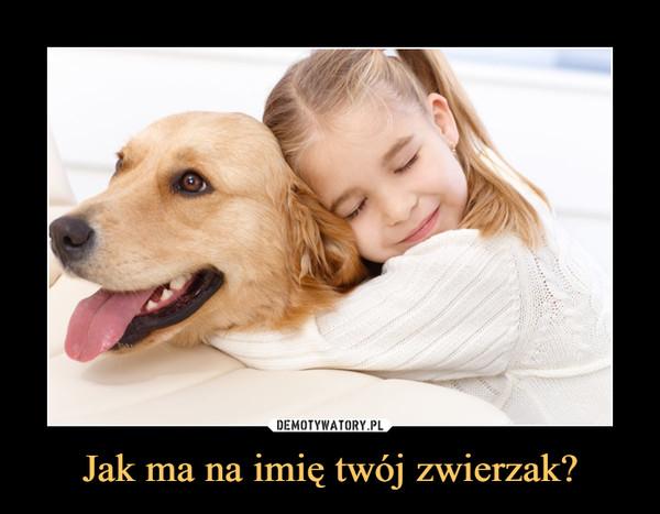 Jak ma na imię twój zwierzak? –