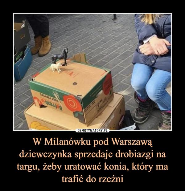 W Milanówku pod Warszawą dziewczynka sprzedaje drobiazgi na targu, żeby uratować konia, który ma trafić do rzeźni –