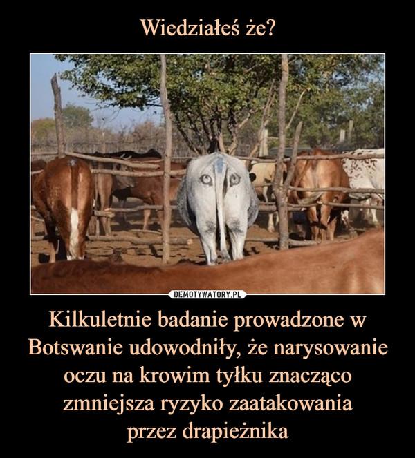 Kilkuletnie badanie prowadzone w Botswanie udowodniły, że narysowanie oczu na krowim tyłku znacząco zmniejsza ryzyko zaatakowaniaprzez drapieżnika –