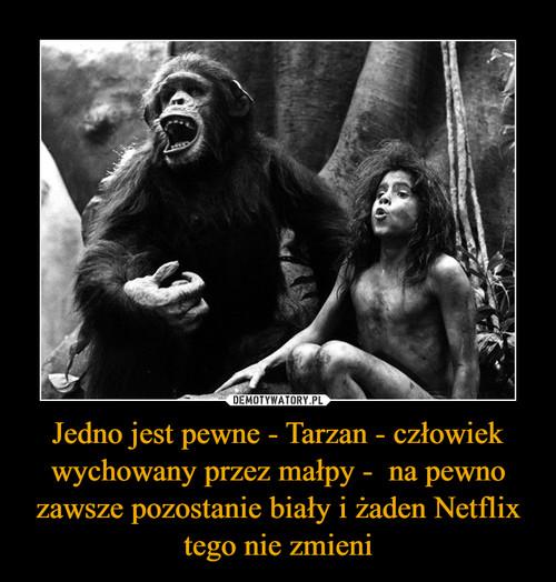 Jedno jest pewne - Tarzan - człowiek wychowany przez małpy -  na pewno zawsze pozostanie biały i żaden Netflix tego nie zmieni