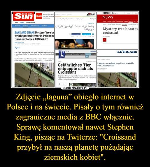 """Zdjęcie """"laguna"""" obiegło internet w Polsce i na świecie. Pisały o tym również zagraniczne media z BBC włącznie. Sprawę komentował nawet Stephen King, pisząc na Twiterze: """"Croissand przybył na naszą planetę pożądając ziemskich kobiet""""."""