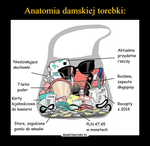 Anatomia damskiej torebki: