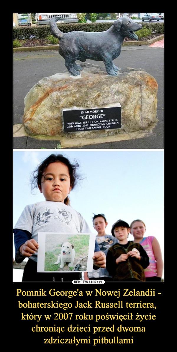 Pomnik George'a w Nowej Zelandii - bohaterskiego Jack Russell terriera, który w 2007 roku poświęcił życie chroniąc dzieci przed dwoma zdziczałymi pitbullami –
