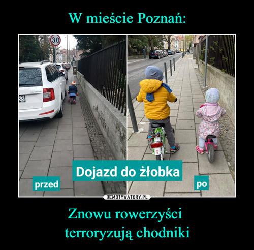 W mieście Poznań: Znowu rowerzyści  terroryzują chodniki