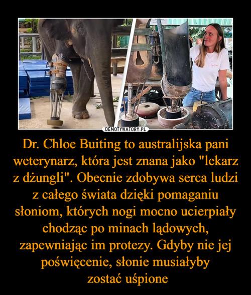 """Dr. Chloe Buiting to australijska pani weterynarz, która jest znana jako """"lekarz z dżungli"""". Obecnie zdobywa serca ludzi z całego świata dzięki pomaganiu słoniom, których nogi mocno ucierpiały chodząc po minach lądowych, zapewniając im protezy. Gdyby nie jej poświęcenie, słonie musiałyby  zostać uśpione"""