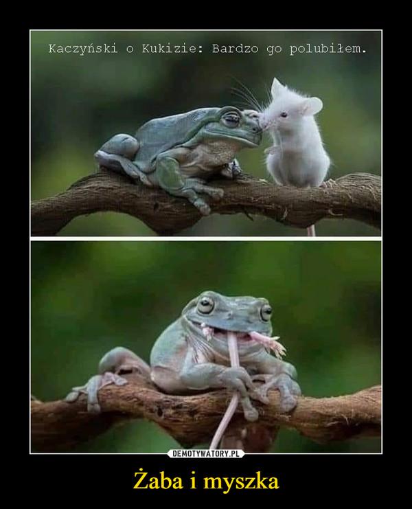 Żaba i myszka –