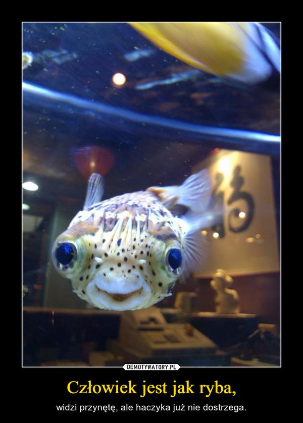 рыба видит приманку а не крючоккнига в счастье украшает