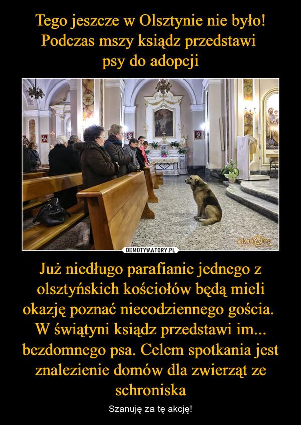 Tego jeszcze w Olsztynie nie było! Podczas mszy ksiądz przedstawi psy do adopcji Już niedługo parafianie jednego z olsztyńskich kościołów będą mieli okazję poznać niecodziennego gościa. W świątyni ksiądz przedstawi im... bezdomnego psa. Celem spotkania jest znalezienie domów dla zwierząt ze schroniska