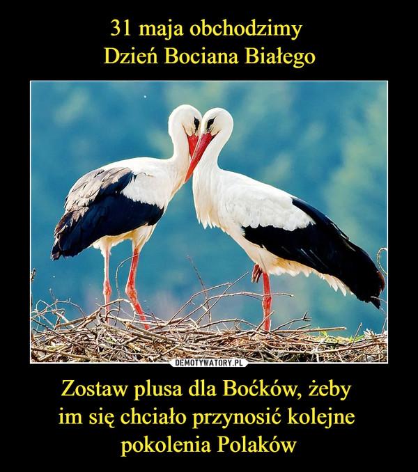 31 maja obchodzimy Dzień Bociana Białego Zostaw plusa dla Boćków, żeby im się chciało przynosić kolejne pokolenia Polaków