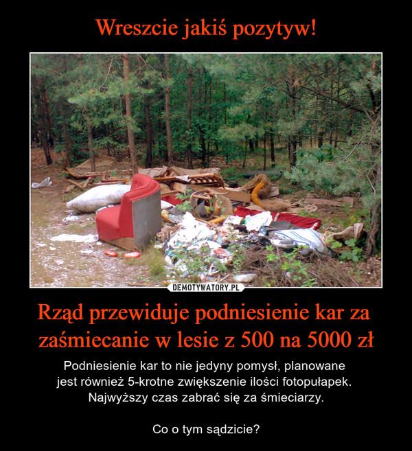 Wreszcie jakiś pozytyw! Rząd przewiduje podniesienie kar za zaśmiecanie w lesie z 500 na 5000 zł
